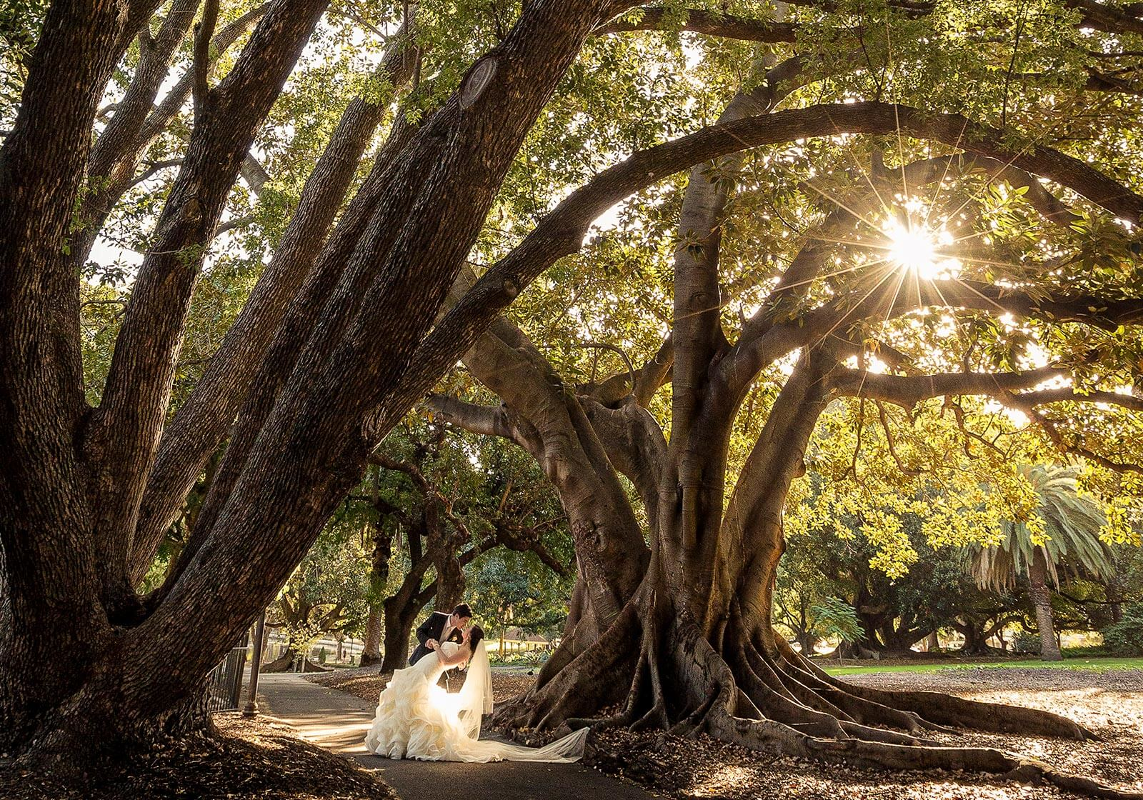 Hyde Park, Perth Wedding Photography by Peter Adams-Shawn