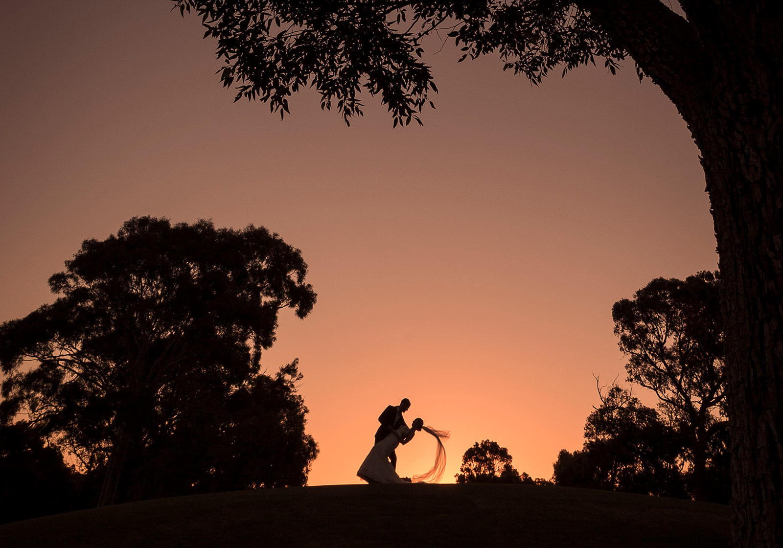 Lake Karrinyup Golf Club, Perth Wedding Photography by Peter Adams-Shawn