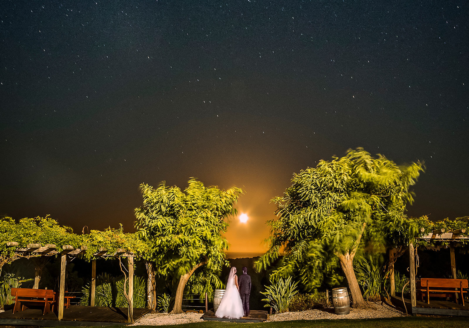Wise Wines, Dunsborough Wedding Photography by Peter Adams-Shawn